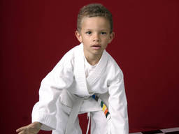Your kid will love Martial arts!