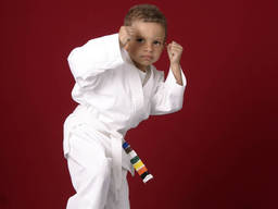 A kid who knows taekwondo