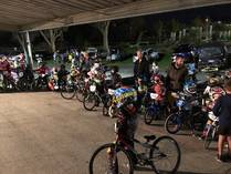 Hamilton BMX Club Open Day Forest Lake (3200) BMX Racing Clubs 3