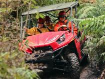 1 Hour Enchanted Forest Track Tour Deal Greymouth City (7805) Quad Bike _small