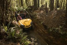1 Hour Enchanted Forest Track Tour Deal Greymouth City (7805) Quad Bike 4 _small