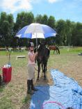Take time out with The Horse - Christmas and New Year School holiday programmes Lincoln (7608) Horse Riding Classes & Lessons 2 _small
