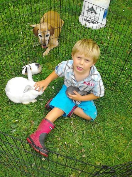 Andrew plays at home with the rabbits and guniea pigs.