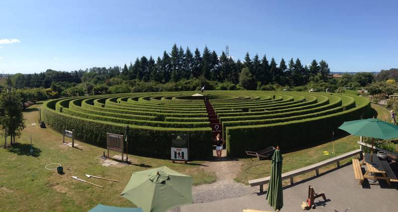 """Have fun - get lost""  in 1.4 klms of hedge maze, accept the challenge!"